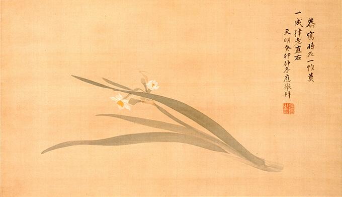 円山応挙「水仙図」