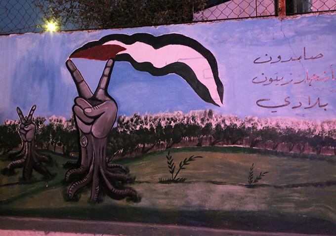 大地に根を張る木々がピースサインとパレスチナの旗を掲げる / ビリン