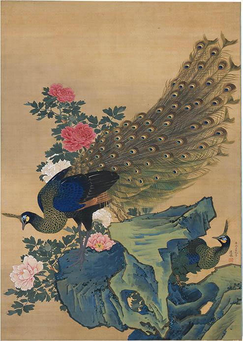 円山応挙 牡丹孔雀図(前期・嵯峨嵐山美術館)